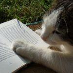 本を読めない私が本を読めるようになったワケ